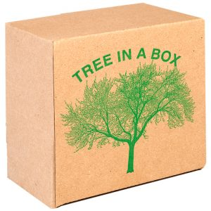bedfordview-TREE PRINTED BOX