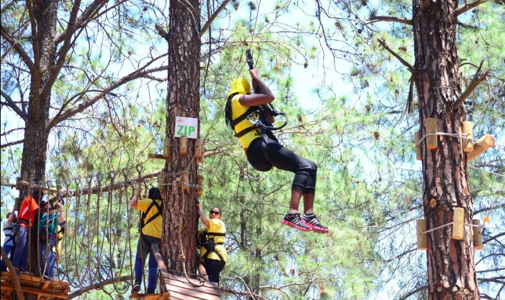 Go On An Adventure At GoApe Modderfontein 2