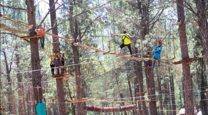 Go On An Adventure At GoApe Modderfontein