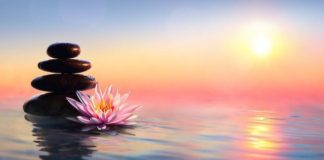 Join The Still Mind Weekly Meditation