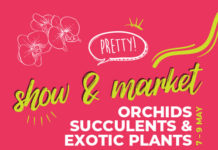 Greenstone Shopping Centre Hosting Plant Market And Orchid Show
